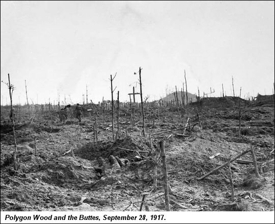 Polygon Wood Sept 28 1917 Desolate landscape with no trees.